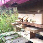 Runde Fluglöcher an der Bienenkiste