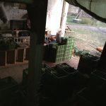 Packstation noch am Nachmittag ca. 80 Kisten