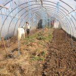 Carino Tunnelzelt Beetvorbereitung