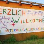 Interkultureller Garten Rostock -- ein offener sozialer und ökologischer Rückzugsraum mitten in der Stadt